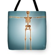 Front View Of Human Skeletal System Tote Bag