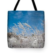 Frost Covered Grasses Against The Sky Tote Bag