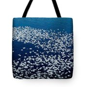 Frost Flakes On Ice - 04 Tote Bag