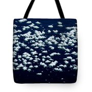 Frost Flakes On Ice - 25 Tote Bag