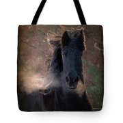 Frost Tote Bag by Fran J Scott