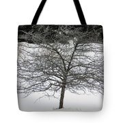 Frost On The Hawthorne Tote Bag
