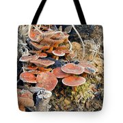 Frosted Cascading Mushrooms Tote Bag