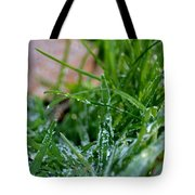 Frosted Dew Tote Bag