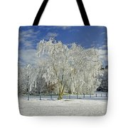 Frosted Trees - Newton Road Park Tote Bag
