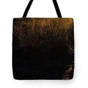 Frosted With Sun Tote Bag