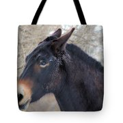 Frosty Face Tote Bag