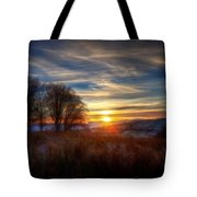 Frosty Grasses Tote Bag