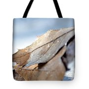 Frosty Leaves In The Morning Sunlight Tote Bag