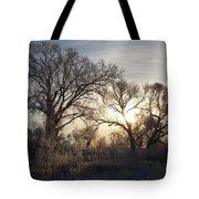 Frosty Morn 4 Tote Bag