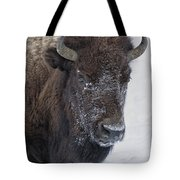 Frosty Morning Bison Tote Bag