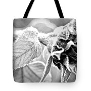 Frosty Textures Tote Bag