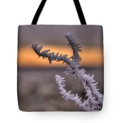 Frosty The Twig  Tote Bag