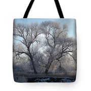 Frosty Trees 4 Tote Bag