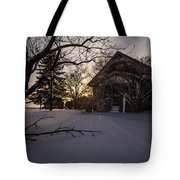 Frozen And Forgotten 2 Tote Bag