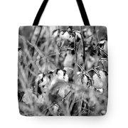 Frozen Cotton Tote Bag