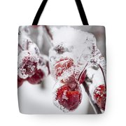 Frozen Crab Apples On Snowy Branch Tote Bag