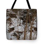 Frozen Dam Tote Bag