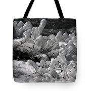 Frozen Falls Tundra Fingers Tote Bag