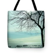Frozen February Morning Tote Bag