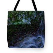 Frozen Garden Stream Tote Bag