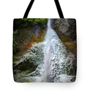 Frozen Marymere Falls Tote Bag
