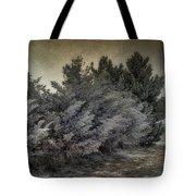 Frozen November Day Tote Bag