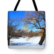 Frozen Over Tote Bag