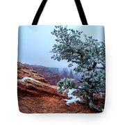 Frozen Overlook Tote Bag