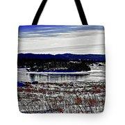 Frozen Pond Digital Painting Tote Bag