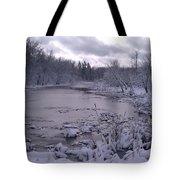 Frozen Pond Tote Bag