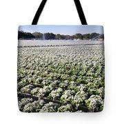 Frozen Strawberries Work B Tote Bag