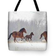 Frozen Track Tote Bag