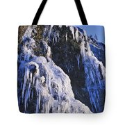 Frozen Waterfall On Oregon Central Coast Tote Bag