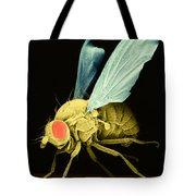 Fruit Fly Sem Tote Bag
