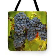 Fruit Of The Vine Imagine The Wine Tote Bag