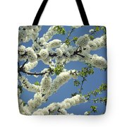 Fruit Tree Blooms Tote Bag