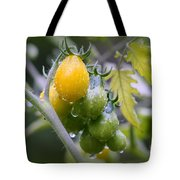 Fruits Of Our Labours Tote Bag