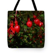Fuchsia  Bells Tote Bag
