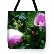Fuchsia Flowers Laced In Droplets Tote Bag