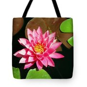 Fuchsia Pink Water Lilly Flower Floating In Pond Tote Bag