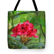 Fuchsia Rhododendron Moore State Park Tote Bag