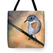 Fuerteventura Chat Tote Bag