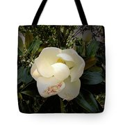 Fulfillment Tote Bag