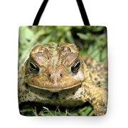 Full Frontal Tote Bag