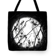Full Moon And Poplar Branches Tote Bag