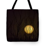 Full Moon Behind The Trees Tote Bag