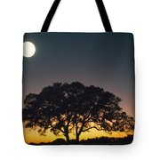 Full Moon Over Silhouetted Tree Tote Bag