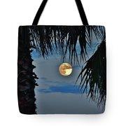 Full Moon Palm Tree 5 9/17 Tote Bag
