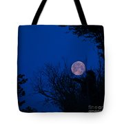Full Moon With Trees Tote Bag